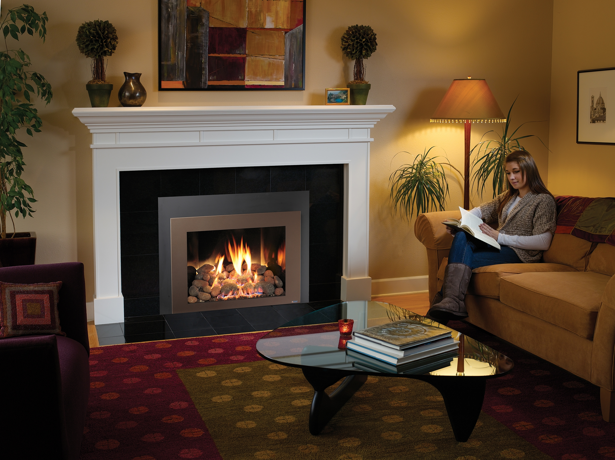 Gas Fireplace Inserts North Forge Fireplaces Inserts